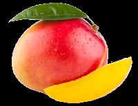 Познавательный журнал Vector, познавательный журнал вектор, манго