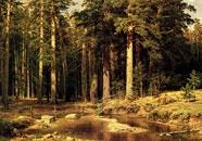 Познавательный журнал cleng, живопись, пейзаж, Шишкин, HEAGLOBE, Тимур Уваровит